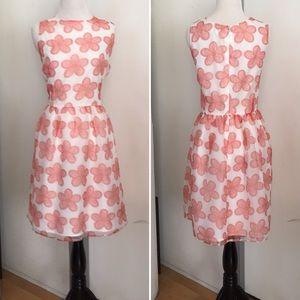 Plus Size BB Dakota Floral Print Summer Dress